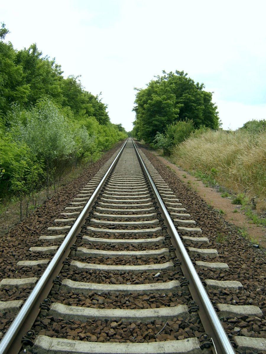 Железнодорожные рельсы - самый востребованный в России тип рельсового проката